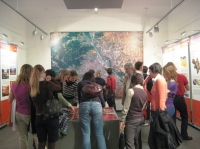 2008.11.06. NRGI – Tanulmányút: Bécs